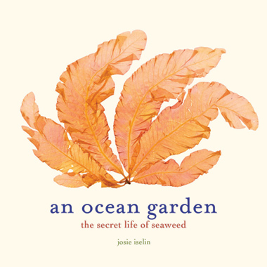 An Ocean Garden by Josie Iselin